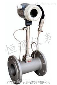 鍋爐蒸汽流量計HTMC-VF0101/C24/T1P1/D3Z