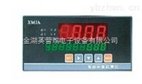 XMJA-9000智能流量积算控制仪