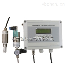 OX-H-OX-H在线式氢气纯度分析仪漏点仪