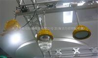 BPC8720/防爆平台灯