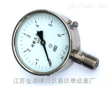 不锈钢精密压力表,不锈钢精密压力表厂家