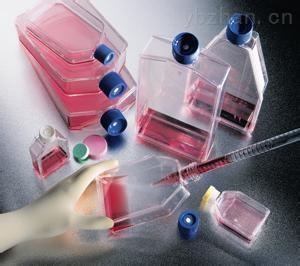 人肝癌细胞,SSMC-7721细胞价格