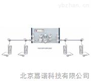 P3300/P3400/P3500系列双侧式特气汇流排