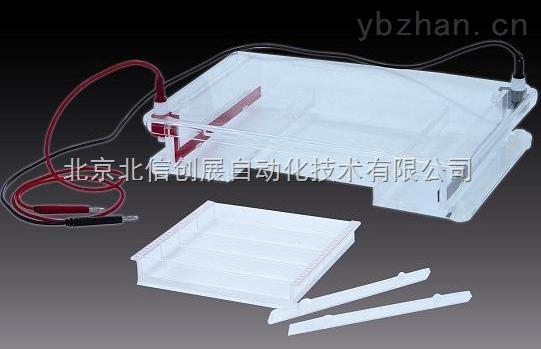 DL19- DYCP-31F-琼脂糖水平电泳仪