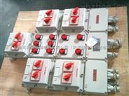 订做防爆(电磁)电机启动箱BXQ51-T