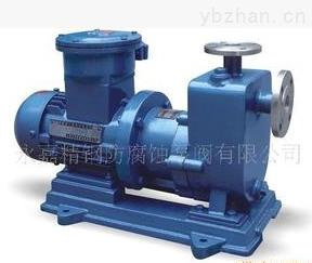 ZCQ65-50-145-ZCQ65-50-145无泄漏磁力化工泵