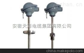 WREK-121-E-防噴式鎧裝熱電偶
