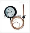 WTZ,WTQ-288,电接点压力式指示温度计