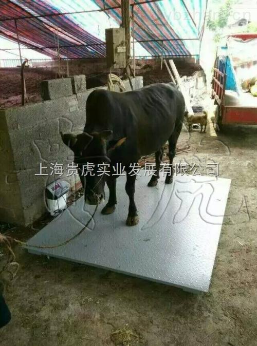 GH-SCS-動物秤稱豬牛,畜牧秤2噸3噸價格多少