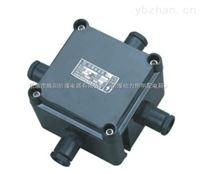 BJH8030/AB1C1-DLXR防爆防腐接线盒