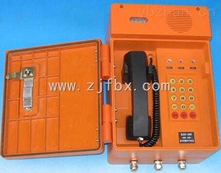 1,数字化集成电路,稳定可靠,功耗低 2,采用数字降噪技术和保真扩音