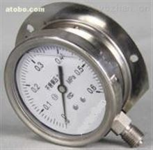 YN -100TQ径向带边耐震压力表