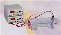 北京六一 DYCZ-24DN型  迷你雙垂直電泳儀(槽)