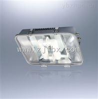 NFC9175NFC9175长寿高效节能无极灯