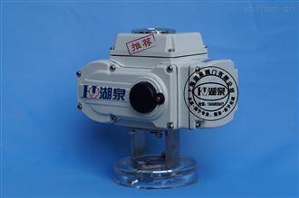 上海湖泉专业生产精小型电动执行器