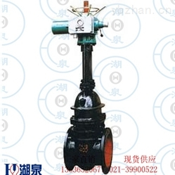 进口铸铁电动闸阀