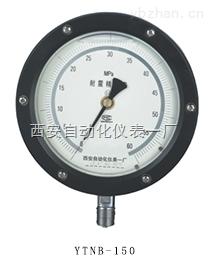 YTNB-150-抗震精密压力表