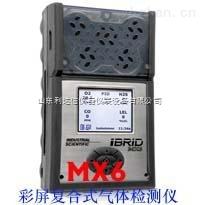 MX6-復合氣體檢測儀
