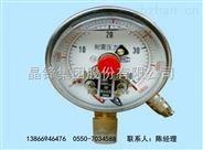 WSSX-401 电接点温度计