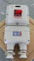 厂家供应BDZ52-20A带漏电防爆断路器
