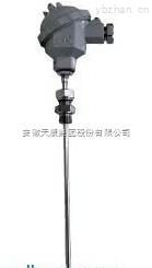 WRE-230NM電廠耐磨熱電偶
