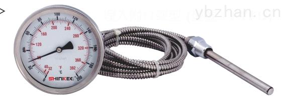 WT—208带边压力式温度计