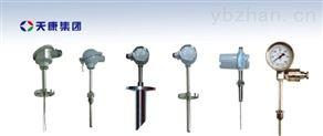 WRNK2-440双支K型防爆热电偶