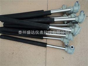 F46护套防腐热电阻