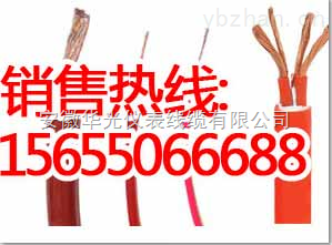 【YGVF、YGVFP、YGVFP2、YGVFRP、ZR-YGVF、YGHF4-供应高温硅橡胶电缆J