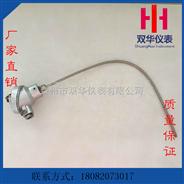 厂家专业生产泰州双华仪表PT100铠装热电阻 规格齐全