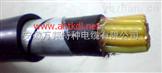 (ZR)-FG22  (ZR)-FV22耐温铠装电缆