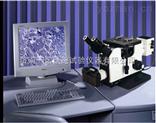 微机控制三目倒置金相显微镜