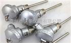 WZC2-130双支铜热电阻