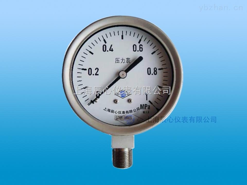 YNC-100B-上海辰心仪表压力表
