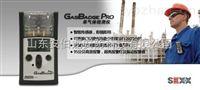 GB60氯气检测仪