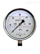 SAS系列壓力表(一)