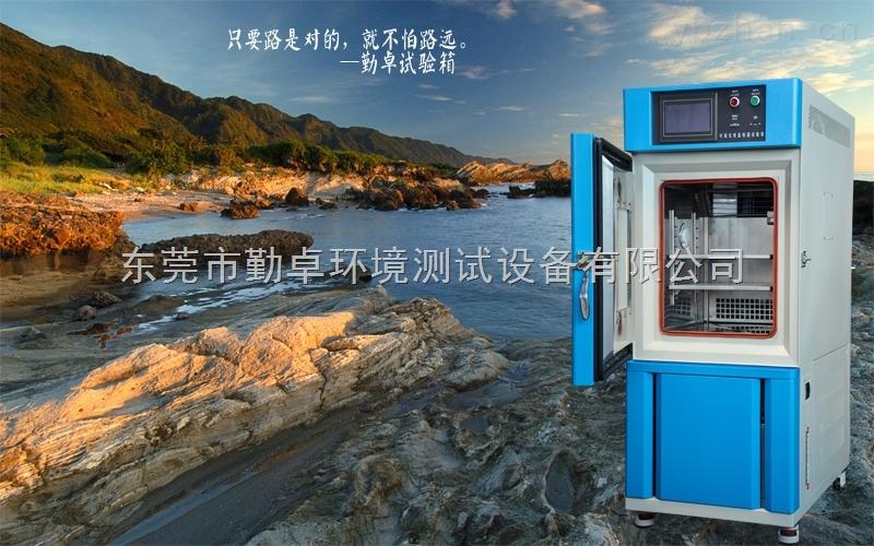 低溫試驗箱,低溫恒溫試驗箱,低溫試驗機