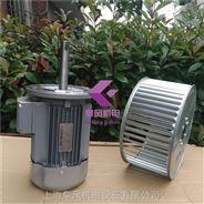 烘箱熱風循環風機-非標加長軸電機