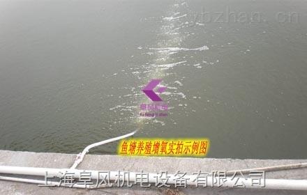 上海鱼塘增氧气泵