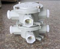 湖北锅炉防爆接线盒型号-IIC