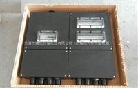 FXMD-塑料戶外強防雨防塵防腐配電箱