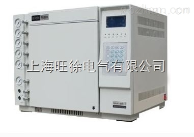 TH-2010气相色谱仪Z新
