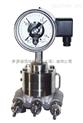 卫生型压力表BH5、高质量卡环式壳体DN100