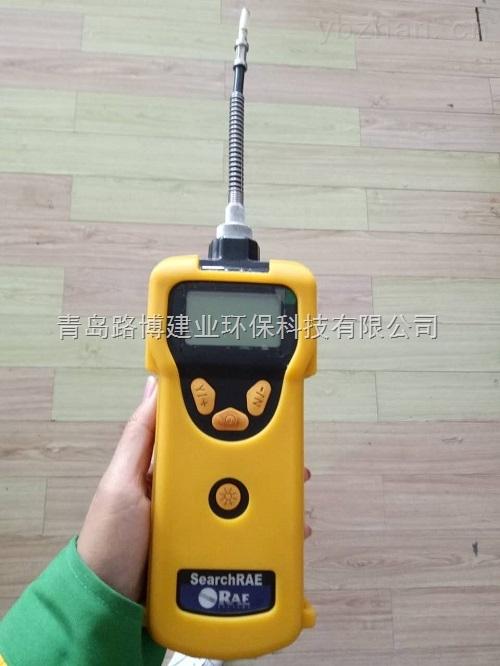 PGM-1600-美国华瑞PGM-1600可燃气有毒气体检测仪