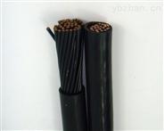 铜芯硅橡胶绝缘护套铜带屏蔽控制电缆