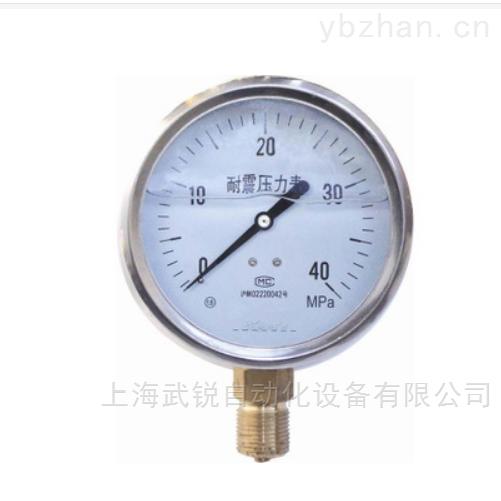 耐震压力表制造商