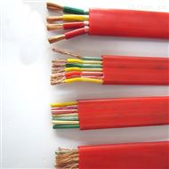 天康硅橡胶扁电缆