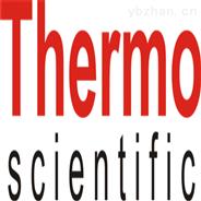 熱電公司 Thermo密度變送器