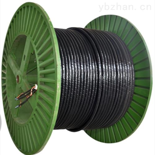 耐高温计算机电缆DJFPFRP22-2*2*1.5