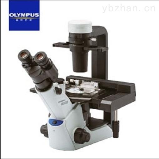 CKX53-奥林巴斯倒置显微镜CKX53